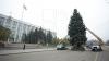 Cel mai important Pom de Crăciun al ţării va fi instalat mâine în Piaţa Marii Adunări Naţionale