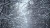 Iarna şi-a intrat în drepturi la Briceni. Un martor ocular ne arată cât de mult a nins (VIDEO)