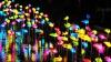 Festivalului Lampioanelor în Coreea de Sud. În centrul Seulului a fost creată o lume de poveste