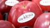 Moldovenii dau vina pe Guvernul Rusiei pentru embargourile impuse la produsele din țara noastră