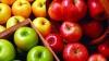 Mai mulți producători de mere vor primi compensații de la Guvern