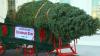 Familia Obama a primit pomul de Crăciun care va fi instalat potrivit unei tradiţii ce datează din 1966