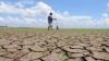 ALARMĂ pentru întreaga planetă! Este înregistrată cea mai mare secetă din ultimii 80 de ani
