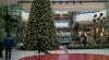 Sărbătoare într-un centru comercial din capitală. Zeci de copii au fost prezenţi la inaugurarea pomului de Crăciun