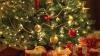 HOROSCOP: Cum îţi împodobeşti bradul de Crăciun în funcţie de zodie