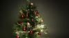 Cum au fost împodobiţi pomii de Crăciun de la Preşedinţie, Guvern şi Parlament (VIDEO)