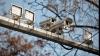 MAI va ataca la Curtea de Apel decizia Judecătoriei Centru de a interzice camerele de supraveghere a traficului