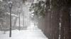 Iarna a paralizat sudul țării. Mai multe trasee sunt blocate, iar peste 20 de localităţi au rămas în beznă