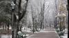 Iarna își intră în drepturi! Weekendul vine cu ninsori și temperaturi sub zero grade