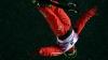 Sărituri extreme la Beijing! Chinezii au făcut legea la Cupa Mondială de schi freestyle