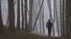 Un bărbat din Ungheni explică în DETALII ce a făcut cu prietena sa într-o pădurice (VIDEO)
