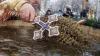 Zeci de oameni s-au îmbulzit să ia apă sfinţită: E o bucurie, o mare sărbătoare pentru Moldova