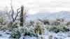 A nins în deșertul Arizona! Fenomenul a provocat haos în sud-vestul Statelor Unite