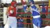 Boxerii moldoveni vor avea parte de un an dificil în 2015. Pentru ce evenimente se pregătesc
