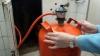 Explozia unei butelii de gaz a dus la spitalizarea membrilor unei familii din Nisporeni