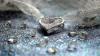 Hoaţă de diamante la 12 ani. O fetiţă din Hong Kong a furat un colier de milioane