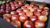 Rosselhoznadzor şi Agenţia pentru Siguranţa Alimentelor au reluat discuţiile despre exportul de mere în Rusia