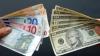 Euro şi dolarul, ÎN SCĂDERE faţă de leu. Cursul valutar stabilit de BNM