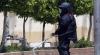 Detectivi cu trompă: Animalele antrenate de armata americană pentru a găsi explozibil