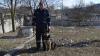 Câinele polițist Exon continuă să bage spaima în infractori! Doi tineri au fost reținuți la Hâncești (FOTO)