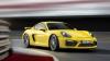 Porsche anunță debutul a două modele noi extrem de performante