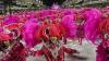 TALENTUL NU ARE VÂRSTĂ! Zeci de copii au dansat pe ritmuri fierbinți de samba