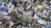 Deşeuri şi animale moarte! Oraşul Codru se confruntă cu un dezastru ecologic (VIDEO)