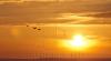 ULTIMELE PREGĂTIRI pentru vizualizarea eclipsei de soare. Meteorologii au VEŞTI RELE