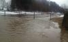 Inundații de proporții în SUA. Fluviul Ohio a ieșit din matcă în urma topirii zăpezii