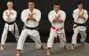Un nou seminar internaţional la karate Goju-Ryu se desfăşoară la Chişinău (VIDEO)