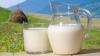 Lapte ÎN  praf. Ce să facă sătenii din Mihăilenii Noi cu lactatele