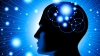 Corpul uman: 10 descoperiri incredibile despre creier
