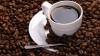Organizarea licitaţiei de procurare a ceaiului şi cafelei pentru angajaţii Agenţiei Medicamentului, LEGALĂ