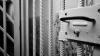 Cinci ani de PUŞCĂRIE pentru un bărbat din Şoldăneşti. Descoperirea făcută în curtea inculpatului