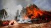 Nu mai contenesc! Incendiile de vegetație au ajuns până în regiunea rusă Transbaikal (FOTOREPORT)