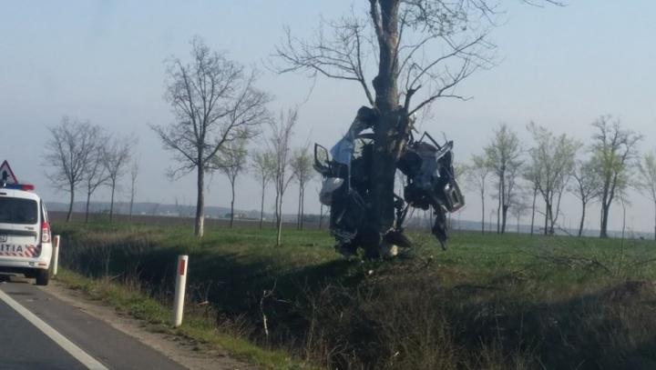 """""""Credeam că am halucinaţii!"""" ACCIDENT TERIBIL văzut de șoferi într-o curbă periculoasă (FOTO)"""