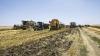 În căutarea soluţiilor pentru redresarea agriculturii. Deputații au creat o comisie specială