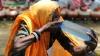 Stare de ALERTĂ în India! Peste 1.100 de oameni au murit din cauza temperaturilor ridicate