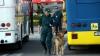 Bagaj silenţios, care ar fi putut face victime, descoperit într-un autobuz cu turişti