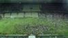 BĂTAIE GENERALĂ la un meci de fotbal în Brazilia. Poliţia a intervenit rapid