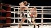 Muşcaţi de ureche şi epuizaţi. Luptătorii moldoveni au cucerit 26 de medalii la Verona