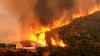 Incendiile de pădure fac ravagii în Rusia. Flăcările mistuie tot ce le stă în cale