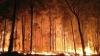 Incendiu de pădure în Corsica. Peste 1.600 de hectare afectate și trei persoane spitalizate