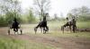 Cursă de cai la Ceadîr-Lunga! Finalul NEAŞTEPTAT al întrecerii i-a UIMIT pe spectatori (FOTOREPORT)