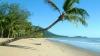 Descoperire ÎNFRICOȘĂTOARE pe plajă. Apele au adus la mal ceva monstruos