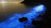 (VIDEO) Poluarea generează un SPECTACOL DE LUMINI în Oceanul Pacific
