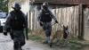Percheziţii ample în România. Membrii unui grup infracţional sunt vizitaţi de poliţişti
