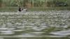 TRAGEDIE într-un sat din Ocniţa. Un bărbat s-a înecat într-un lac (VIDEO)