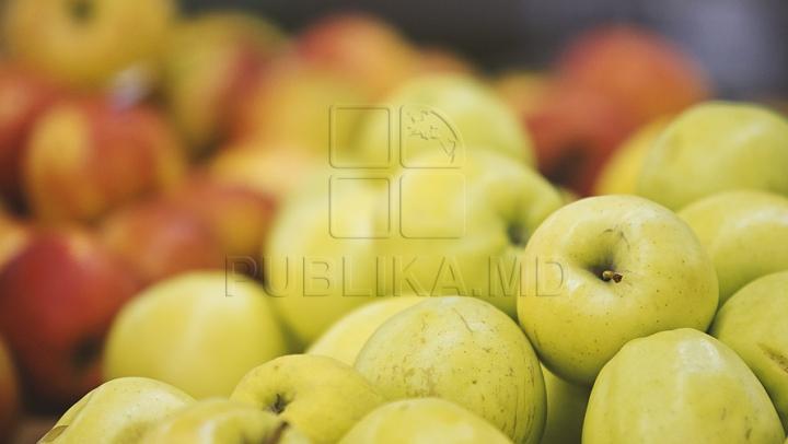 DECIS! Fermierii afectaţi de embargoul rusesc la fructe îşi vor primi despăgubirile