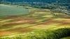 Agricultura, AMENINŢATĂ DE SECETĂ. Fermierii se aşteaptă la pagube şi caută cu disperare soluţii